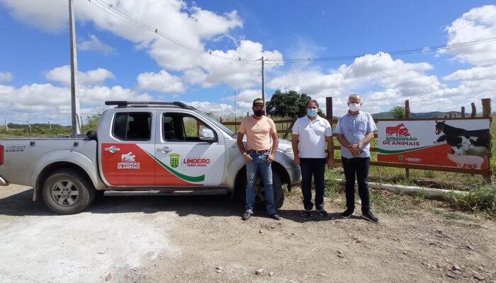 Prefeitura de Limoeiro implanta serviço de apreensão de animais